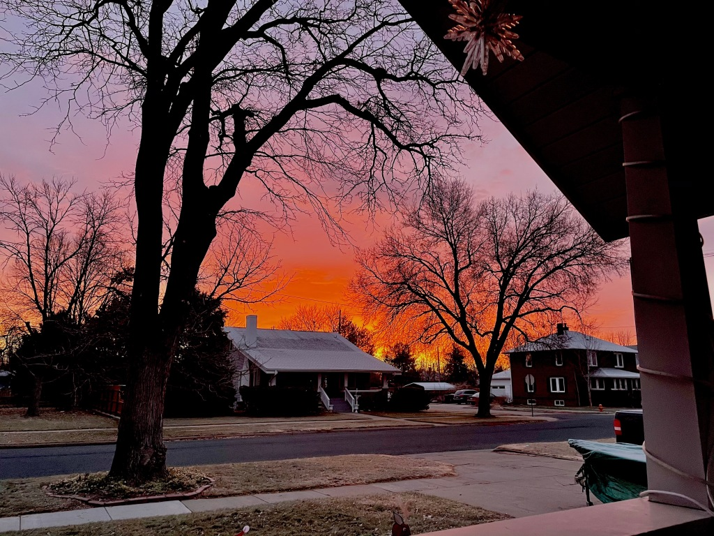 A view of the sunrise from the author's porch, the street and a few houses across the street are visible beneath the dark silhouettes of trees set against an orange-pink sky.